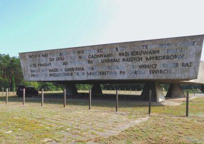 Chelmno-nad-Nerem-ekspertyza-i-projekt-remontu-pomnika-004