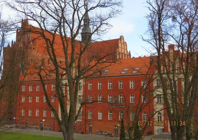 Collegium-sala-gimnastyczna-biblioteka-01923
